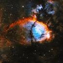 NGC896/IC1795 - The Fish,                                Jason Wiscovitch