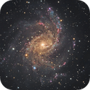 NGC 6946, Fireworks Galaxy,                                Ruben Barbosa
