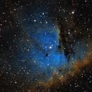 Pacman Nebula SHO,                                Eric Cauble