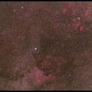Nebulae in Cygnus,                                Ernst Gamauf