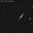 NGC 3877 in Uma (RASC 43),                                Howard