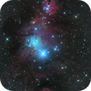 Christmas Tree Cluster and Cone Nebula (Amas de l'Arbre de Noel et Nébuleuse du Cone),                                Roger Bertuli