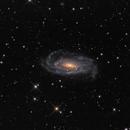 NGC5033,                                chlopak