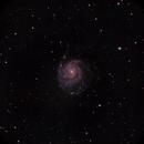 M101,                                Deraux LeDoux
