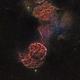 IC443 The Jellyfish Nebula,                                Massimo Miniello