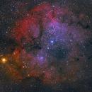 IC1396 The Elephant Trunk Nebula,                                Jeff Dorman