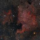 NGC 7000, Nordamerika Nebel,                                Martin Luther