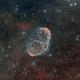 Crescent Nebula (NGC 6888),                                Ara Jerahian