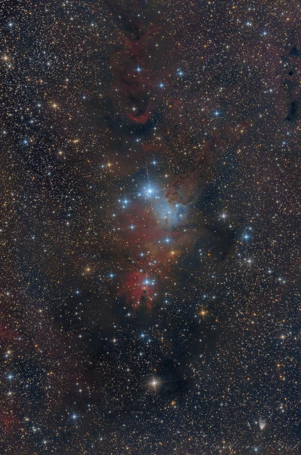 NGC 2261 / NGC 2264,                                Alexander Voigt
