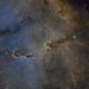 Elephant Trunk Nebula with RGB Stars,                                Becomart