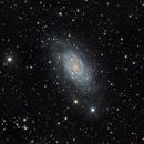 Two Nights for one galaxy,                                Edoardo Luca Radi...