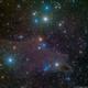 LDN1235 - The Dark Shark Nebula,                                Richard Bratt