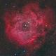 Rosette Nebula (NGC 2244),                                Miles Zhou