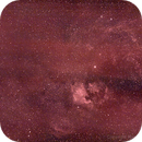 Cygnus Region in H-Alpha,                                Hans-Peter Olschewski