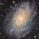 Galaxie du triangle (M33) - Sadr Observatory,                                Julien Bourdette