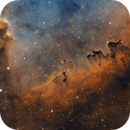 IC1396 - March of the Titans,                                Rodd Dryfoos
