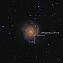 SN 2013ej in M74,                                Elliott McKinley