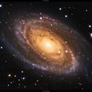 M81 - Bode's Galaxy,                                Dhaval Brahmbhatt