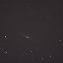 Spindel-Galaxie NGC 4565,                                Dieter Hundertmark
