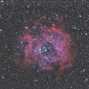 NGC-2234,                                Robert Miller
