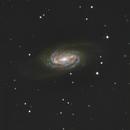 NGC 2903,                                Samara