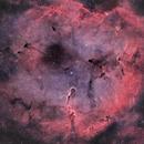 IC 1396 • Elephant's Trunk nebula • HOO,                                Mikael De Ketelaere