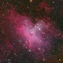 M16 Eagle Nebula,                                George Pappayliou