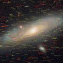 The Great Andromeda Galaxy,                                Matt Harbison