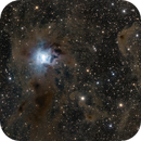 The Iris Nebula (NGC 7023),                                KanKan