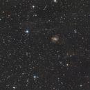 NGC6951 with IFN,                                Bert Scheuneman