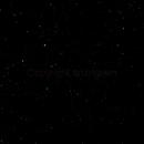 Basic Cygnus,                                Mark Ingram