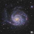 M101 HaLRGB,                                Chris R White