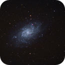 M 33 Galassia del Triangolo,                                Giorgio Ferrari