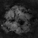IC 1396: Elephant's Trunk Nebula,                                Michael Capurso