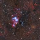 Cone Nebula Region - Second RASA Test (with accidental Akira Fujii effect),                                Jarrett Trezzo