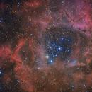 Rosette Nebula,                                Kathy Walker