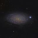 M63 Sunflower Galaxy at 1980mm 2020,                                Bob Stevenson