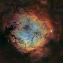 IC1396 Elephant's Trunk Nebula,                                grapeot