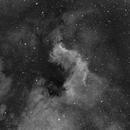 Cygnus Wall in H-alpha,                                Dan Kordella