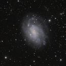 NGC300,                                peter_4059