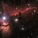 Horsehead and Flame Nebulas,                                Chief