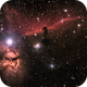 Horsehead and Flame Nebulas,                                Chief