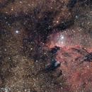 NGC 6188 - Bird of prey,                                Hartmuth Kintzel
