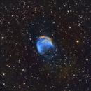 Medusa Nebula SH2-274,                                Brian Meyerberg