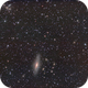 NGC 7331 and Stephan's Quintet,                                Eric Walden