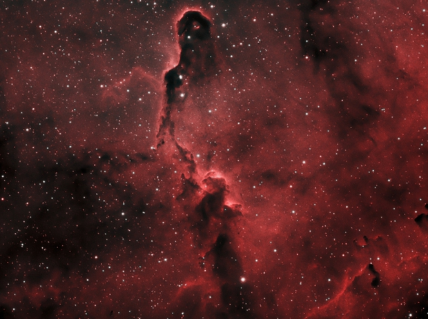 Elephant Trunk IC1396 Ha/OIII/OIII,                                Jordan Cook