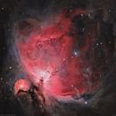 M42 Orion  Nebula,                                Sylvain Lefebvre