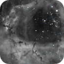 Rosette in HA with RGB Stars,                                Nathan Morgan (Th...