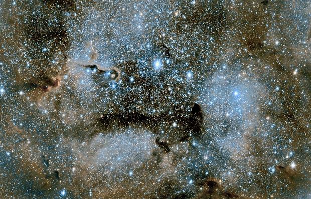 Elephant's Trunk Nebula - IC1396,                                PROMETHEUS