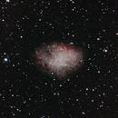 Crab Nebula,                                David Johnson
